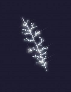 Branche de Noël
